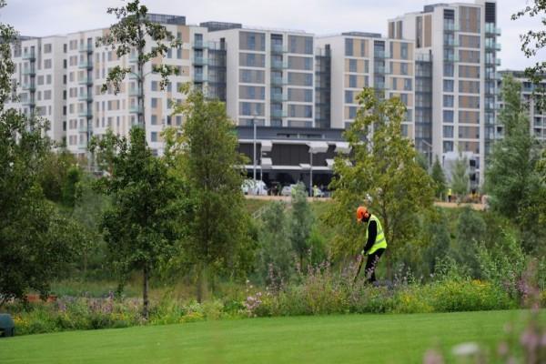 Maintaining the gardens