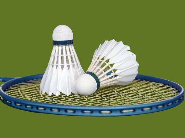 Badminton Video